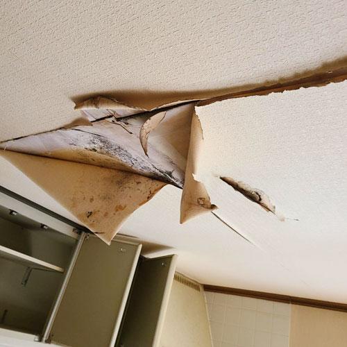 天井のはがれ